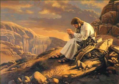 Devocional: Espera en el Señor