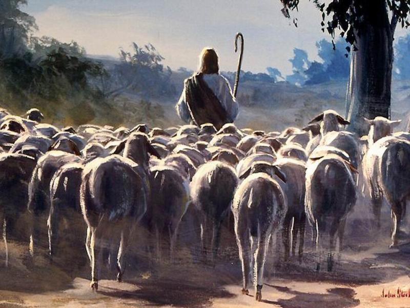 Devocional: Cristo como siervo