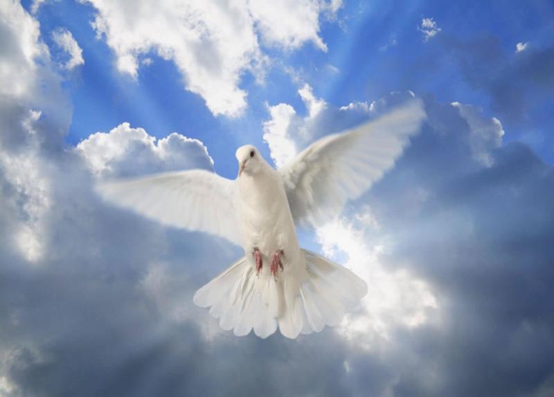 Devocional: El Espíritu de Verdad